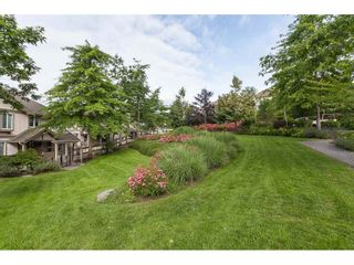"""Photo 34: 95 4401 BLAUSON Boulevard in Abbotsford: Abbotsford East Townhouse for sale in """"Sage Homes at Auguston"""" : MLS®# R2473999"""