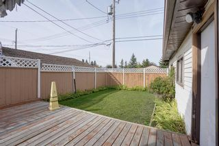 Photo 17: 3307 39 Street SE in Calgary: Dover Detached for sale : MLS®# A1148179