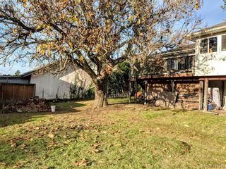 Photo 3: 3868 Carey Rd in VICTORIA: SW Tillicum House for sale (Saanich West)  : MLS®# 801080