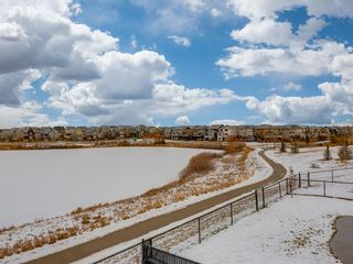 Photo 46: 125 BRIGHTONWOODS Gardens SE in Calgary: New Brighton Detached for sale : MLS®# A1051326