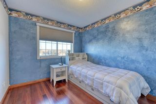 Photo 33: 148 WEST CREEK Boulevard: Chestermere Detached for sale : MLS®# A1062612