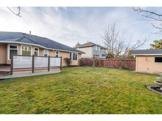 "Photo 33: 4862 208A Street in Langley: Langley City House for sale in ""Newlands"" : MLS®# R2547457"