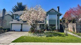 Photo 5: 2481 WILDING WAY in North Vancouver: House for sale : MLS®# R2577487