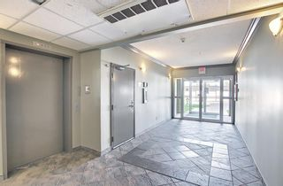 Photo 35: 204 300 Edwards Way NW: Airdrie Apartment for sale : MLS®# A1111430