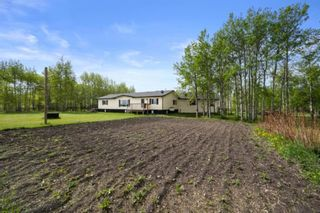 Photo 8: 31101 RR25: Rural Mountain View County Detached for sale : MLS®# A1114375