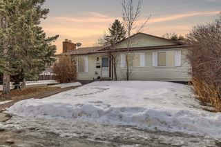 Main Photo: 444 Whiteland Drive NE in Calgary: Whitehorn Detached for sale : MLS®# A1076099