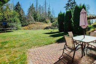 "Photo 31: 23862 133 AVENUE Avenue in Maple Ridge: Silver Valley House for sale in ""ROCKRIDGE ESTATES"" : MLS®# R2496957"