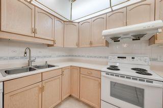 Photo 14: 401 10915 21 Avenue in Edmonton: Zone 16 Condo for sale : MLS®# E4249968