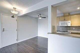 Photo 21: 4302 13045 6 Street SW in Calgary: Canyon Meadows Apartment for sale : MLS®# A1116316