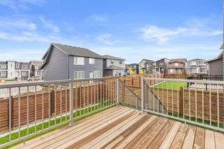 Photo 44: 18 HOWSE Mount NE in Calgary: Livingston Detached for sale : MLS®# A1146906