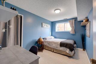 Photo 18: 48 GROVELAND Road: Sherwood Park House for sale : MLS®# E4229448