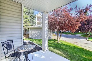 Photo 8: 105 5105 Valleyview Park SE in Calgary: Dover Apartment for sale : MLS®# A1138950