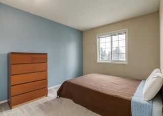 Photo 33: 37 Douglasbank Rise SE in Calgary: Douglasdale/Glen Detached for sale : MLS®# A1079543