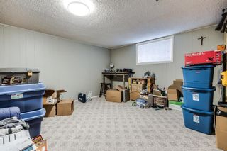Photo 16: 7135 8 Street NW in Calgary: Huntington Hills Detached for sale : MLS®# A1093128
