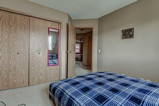 Photo 25: 165 Coventry Court NE in Calgary: Coventry Hills Detached for sale : MLS®# A1112287
