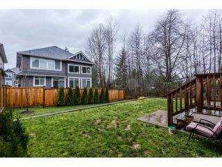Photo 20: 10153 241 STREET in Maple Ridge: Albion House for sale : MLS®# R2029214