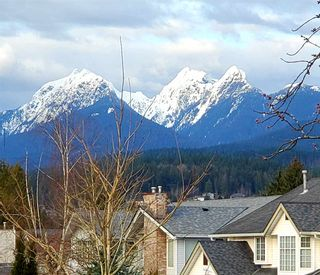 Photo 36: 12245 AURORA Street in Maple Ridge: East Central House for sale : MLS®# R2549377