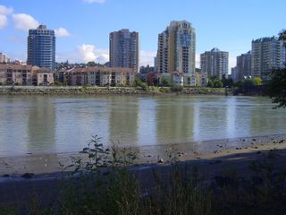 """Photo 47: 217 83 STAR Crescent in New_Westminster: Queensborough Condo for sale in """"RESIDENCE BY THE RIVER"""" (New Westminster)  : MLS®# V728524"""