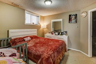 Photo 33: 147 Taracove Landing NE in Calgary: Taradale Detached for sale : MLS®# A1144169