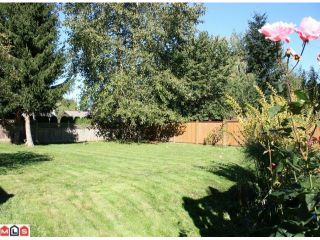 Photo 9: 27021 27B Avenue in Langley: Aldergrove Langley House for sale : MLS®# F1024790