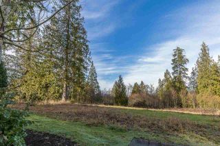 "Photo 18: 102 24185 106B Avenue in Maple Ridge: Albion Townhouse for sale in ""Trails Edge"" : MLS®# R2232407"