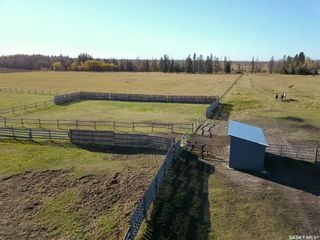 Photo 45: Buchan Acreage in Spiritwood: Residential for sale (Spiritwood Rm No. 496)  : MLS®# SK874044