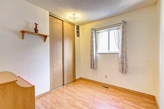 Photo 17: 25 Martinview Crescent NE in Calgary: Martindale Detached for sale : MLS®# A1107227