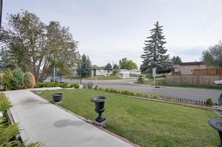 Photo 19: 3307 39 Street SE in Calgary: Dover Detached for sale : MLS®# A1148179