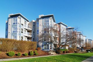 "Photo 14: 205 20245 53 Avenue in Langley: Langley City Condo for sale in ""METRO I"" : MLS®# R2225466"