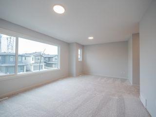 Photo 26: 20031 29 Avenue in Edmonton: Zone 57 House for sale : MLS®# E4257169