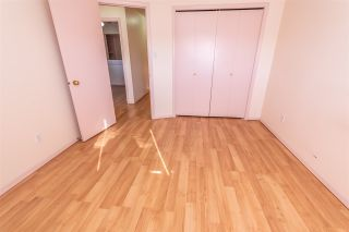 Photo 21: 187 Kirkwood Avenue in Edmonton: Zone 29 House for sale : MLS®# E4232860