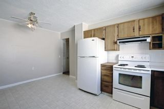 Photo 18: 132 Mardale Crescent NE in Calgary: Marlborough Detached for sale : MLS®# A1146772