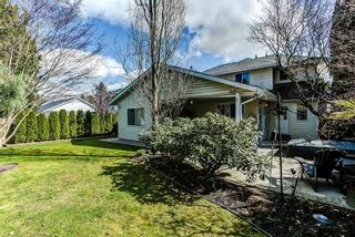 Photo 17: 12049 DOVER Street in Maple Ridge: West Central House for sale : MLS®# R2056899