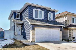 Photo 2: 8230 Saddleridge Drive NE in Calgary: Saddle Ridge Detached for sale : MLS®# A1085120