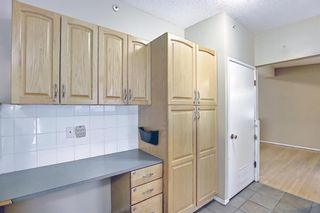 Photo 12: 91 Chancellor Way NW in Calgary: Cambrian Heights Detached for sale : MLS®# A1119930
