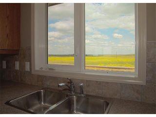 Photo 13: 155013 B Range Road 275: Rural Willow Creek M.D. House for sale : MLS®# C4019954