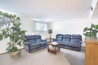 Photo 31: 140 Thames Close NW in Calgary: Thorncliffe Detached for sale : MLS®# A1097862
