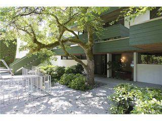 """Photo 14: 7170 HUDSON Street in Vancouver: South Granville House for sale in """"South Granville"""" (Vancouver West)  : MLS®# V1069762"""