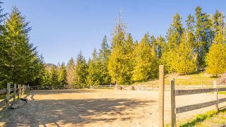 Photo 18: 2939 Laverock Rd in : ML Shawnigan House for sale (Malahat & Area)  : MLS®# 873048