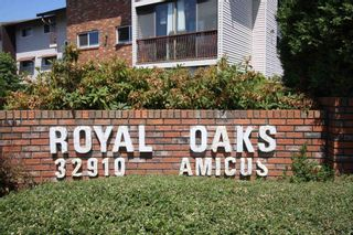 """Main Photo: 210 32910 AMICUS Place in Abbotsford: Central Abbotsford Condo for sale in """"ROYAL OAKS"""" : MLS®# R2602410"""