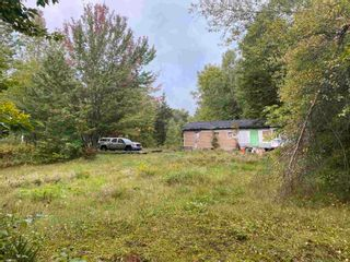 Photo 18: 1005 Heathbell Road in Scotch Hill: 108-Rural Pictou County Vacant Land for sale (Northern Region)  : MLS®# 202124669