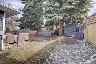 Photo 31: 15 Banting Place: St. Albert House for sale : MLS®# E4235949