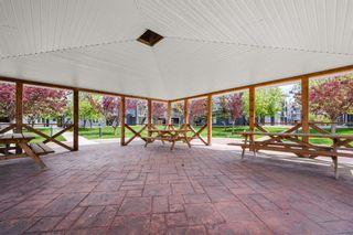 Photo 24: 4205 2280 68 Street NE in Calgary: Monterey Park Apartment for sale : MLS®# A1143228