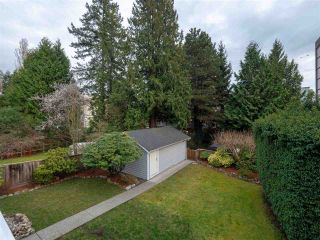 Photo 15: 1472 FULTON Avenue in West Vancouver: Ambleside House for sale : MLS®# R2499022