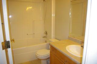 Photo 15: 20145 53 Avenue in Edmonton: Zone 58 House for sale : MLS®# E4252938