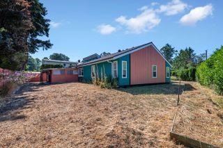 Photo 29: 3923 Cedar Hill Cross Rd in : SE Cedar Hill House for sale (Saanich East)  : MLS®# 851798