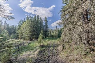 Photo 15: 231175 Bracken Road in Rural Rocky View County: Rural Rocky View MD Land for sale : MLS®# A1116621
