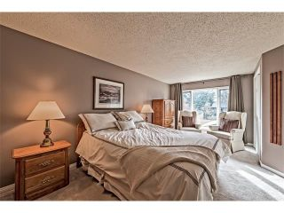 Photo 23: 551 PARKRIDGE Drive SE in Calgary: Parkland House for sale : MLS®# C4045891