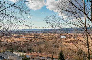 Photo 20: 1185 FLETCHER WAY in Port Coquitlam: Citadel PQ House for sale : MLS®# R2142428