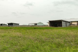 Photo 22: 55416 RGE RD 225: Rural Sturgeon County House for sale : MLS®# E4257944